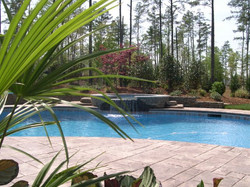 Landscape Install Raleigh NC