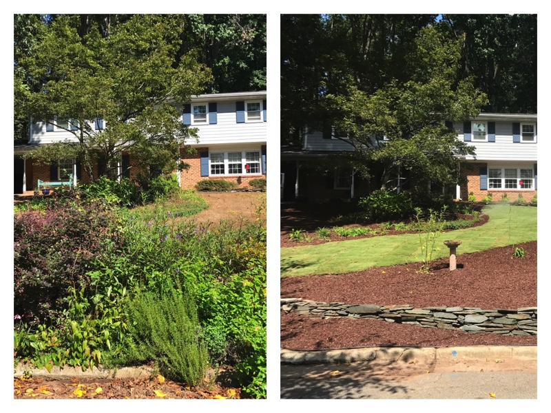Landscape Renovation in North Hills Raleigh NC