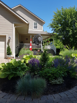 front garden 2020