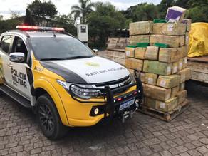 Caminhão com 985 quilos de maconha é apreendido na Rodovia da Uva