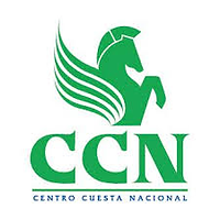 CCN.png