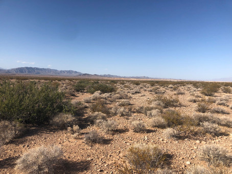 BLM & DOI Issue Final Record of Decision for Milestone 690MW Gemini Solar & Battery Storage in NV