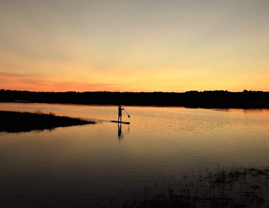 Paddle Boarder - Southern Maine Coast