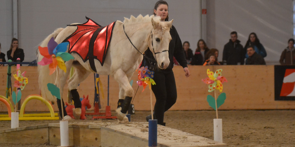 2-Tageskurs: Horse Agility in Hessigkofen