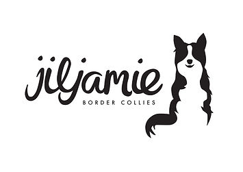 Jiljamie Border Collies