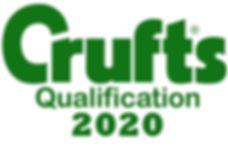 crufts2020.jpg