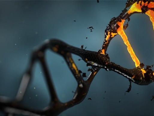 Vent'anni dalla mappatura del DNA umano