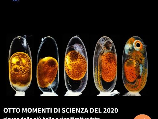 Otto momenti di scienza del 2020