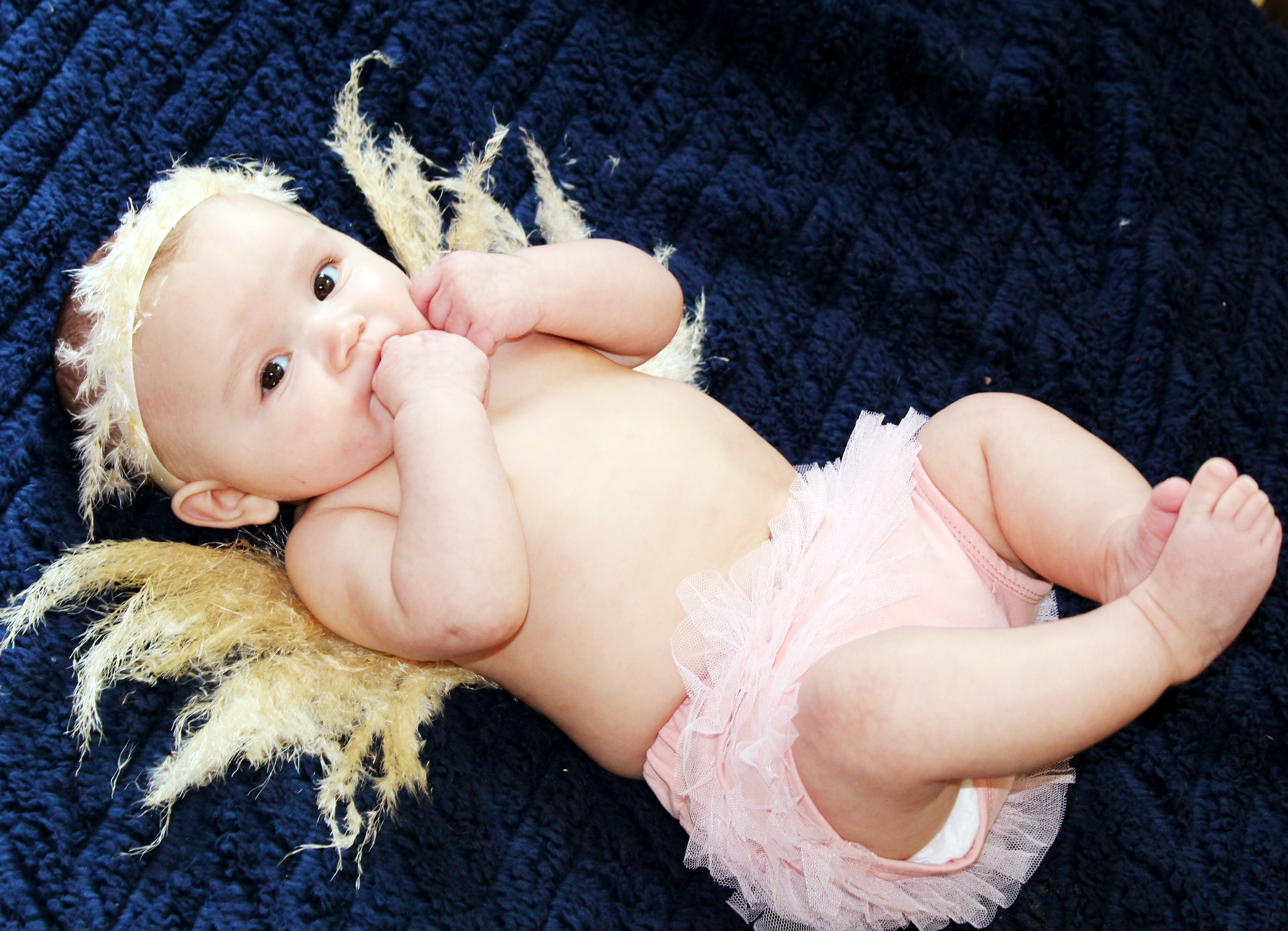 pampas grass angel baby
