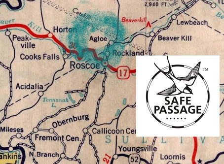 Paper Towns That Offer Safe Passage