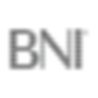 Networking BNI