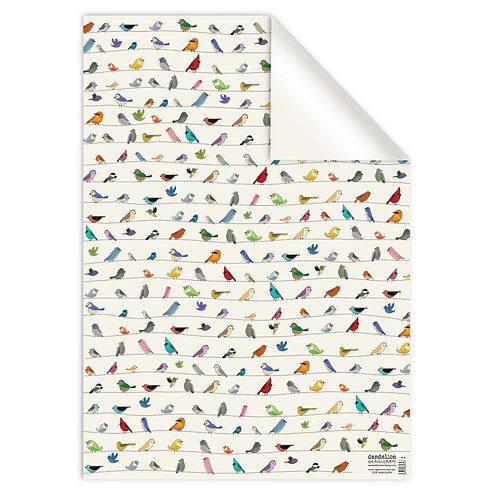 Mixed Birds Gift Wrap