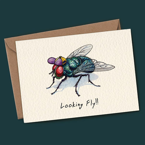 Looking Fly Greeting Card