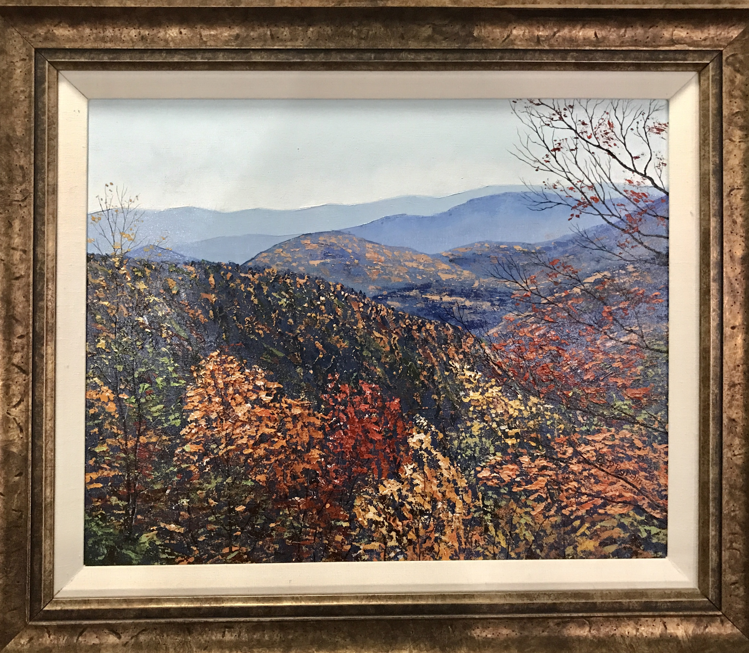 """Autumn in the Blue Ridge"""
