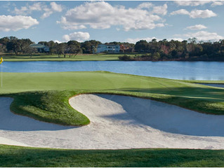 Thank You Mr. Palmer (Bay Hill Review)