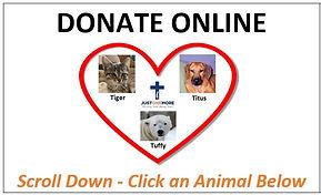 Button-Donate Online.JPG