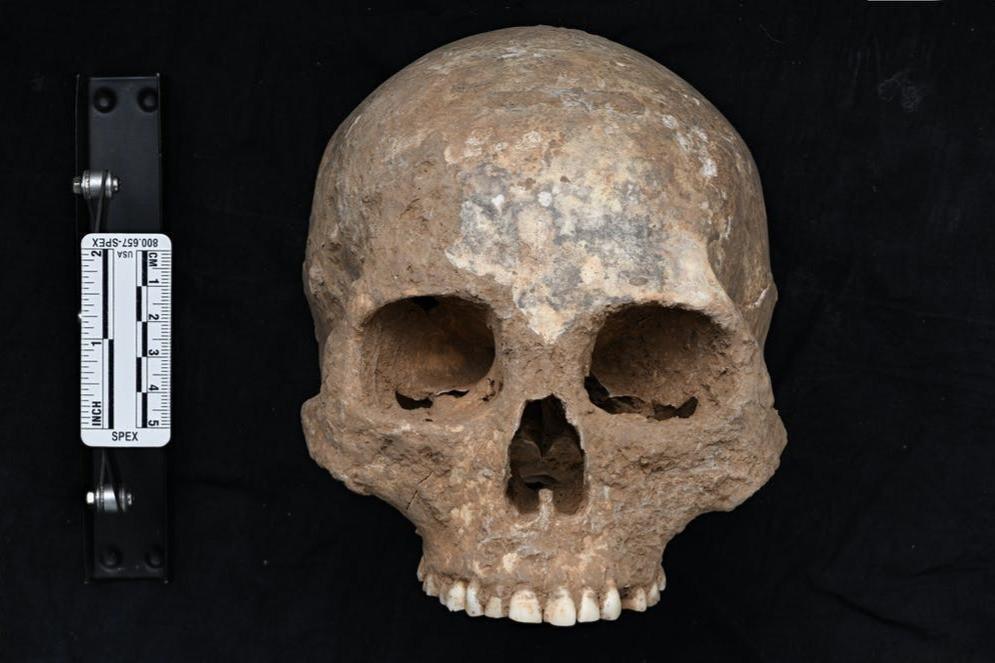 Crânio antigo