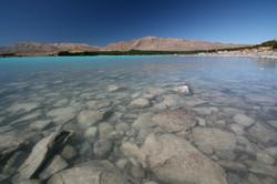 NZ・テカポ湖