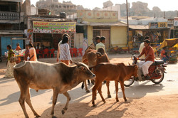 インド・ハンピの町並み