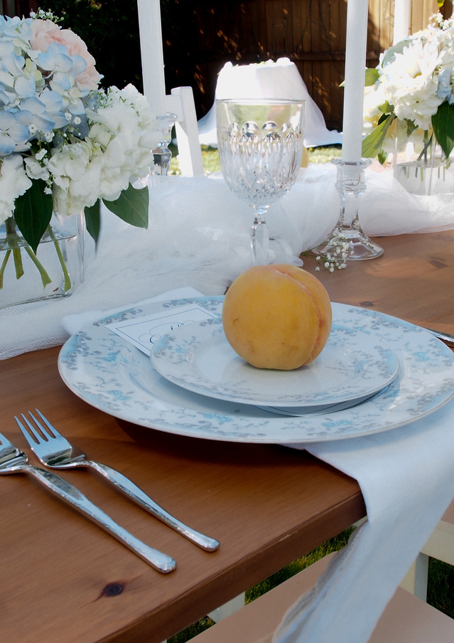 Peach and Blue Backyard wedding Edmonton