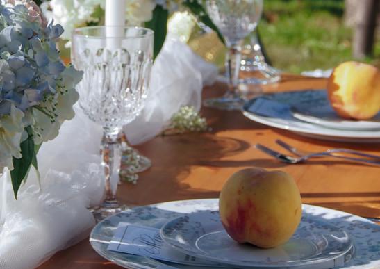 Peach and Blue Backyard wedding