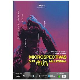 MICROSPECTIVAS DUN MARICA MILLENIAL.JPG