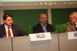 Gallo Netti Antonioli