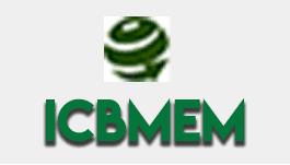 ICBMEM.png