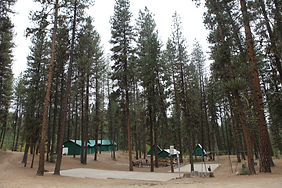 camp Ivydale.1jpg.jpg