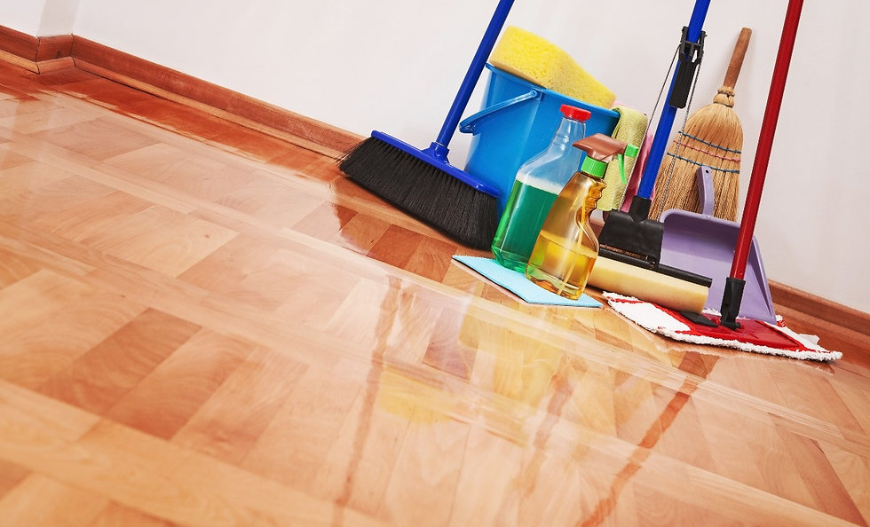House cleaning -Cleaning accessories on