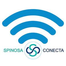 SPINOSACONECTA F.jpg