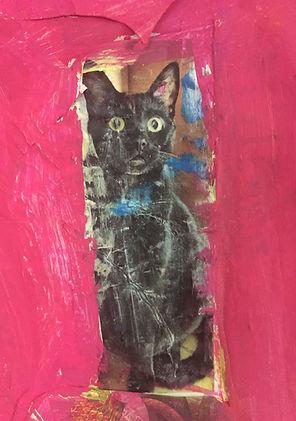 gatto nero spaventato