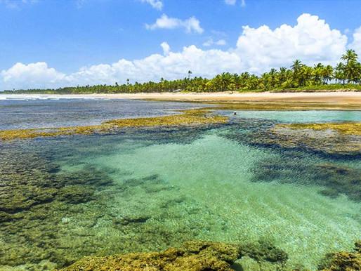 PENÍNSULA DE MARAÚ: O paraíso desconhecido