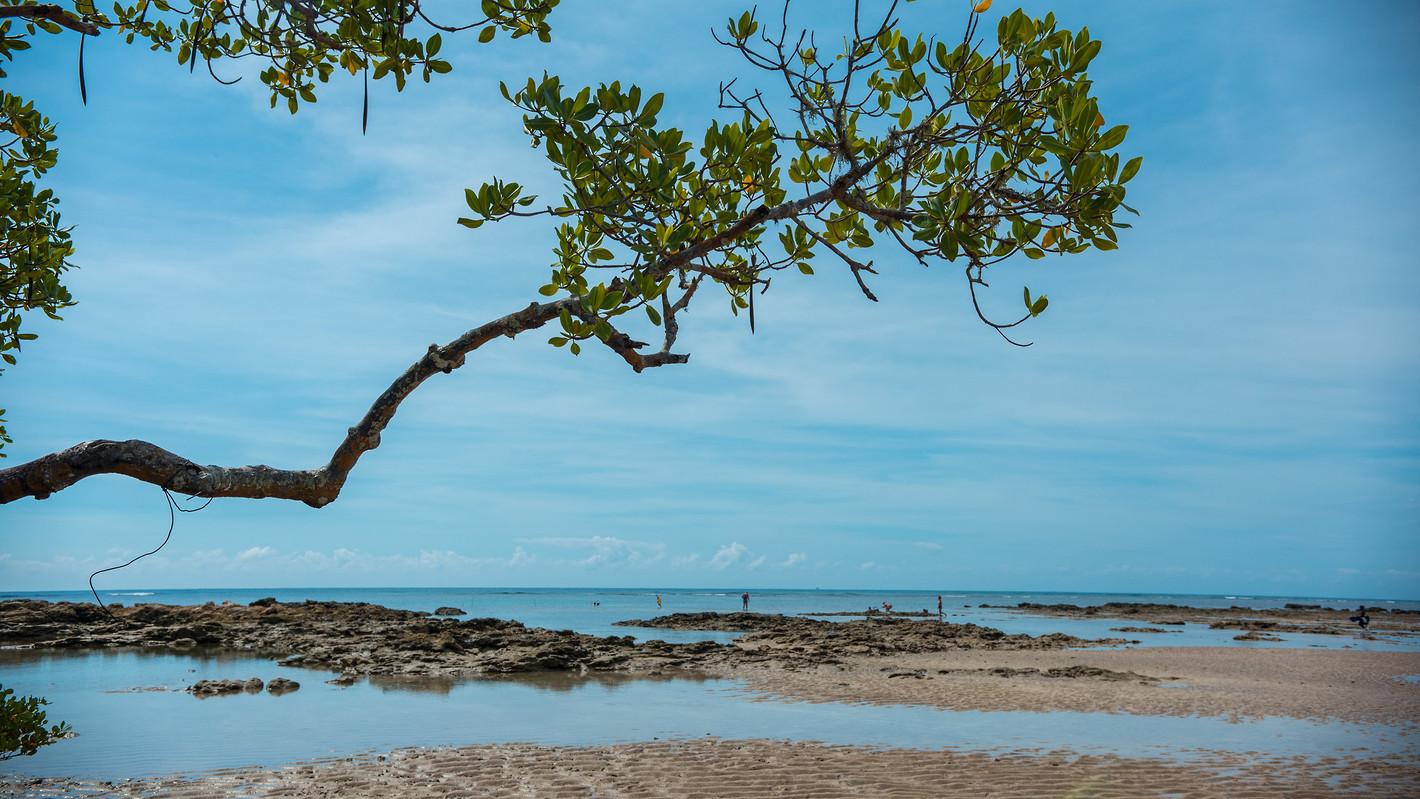 Ilha de Boipeba - Marcio Filho