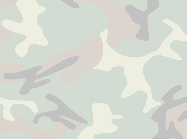Camouflage_edited.png