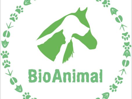 Descubre que es lo que quiere comunicarte tu mascota a través de su comportamiento o síntoma físico.
