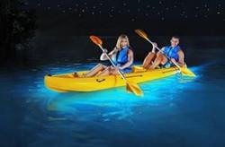Kayaking the Bio Bay