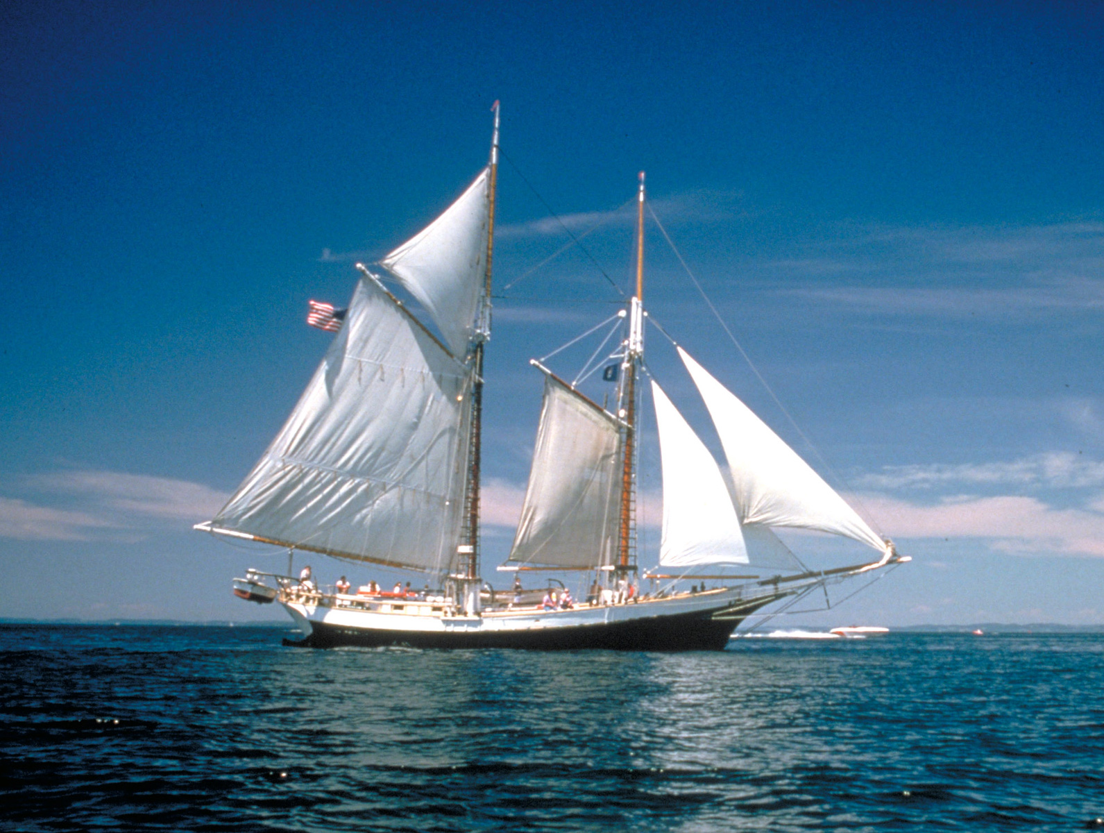 Take A Sailing Tour