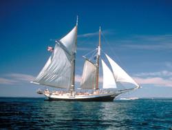 Take A Sailing Tour