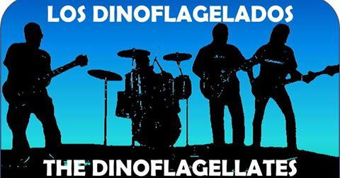 Los Dinoflagelados