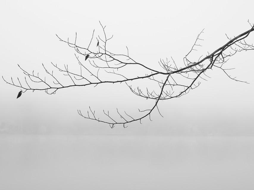 ALowey-Untitled3.jpg