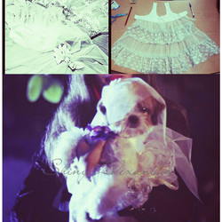 customised bride pet clothing