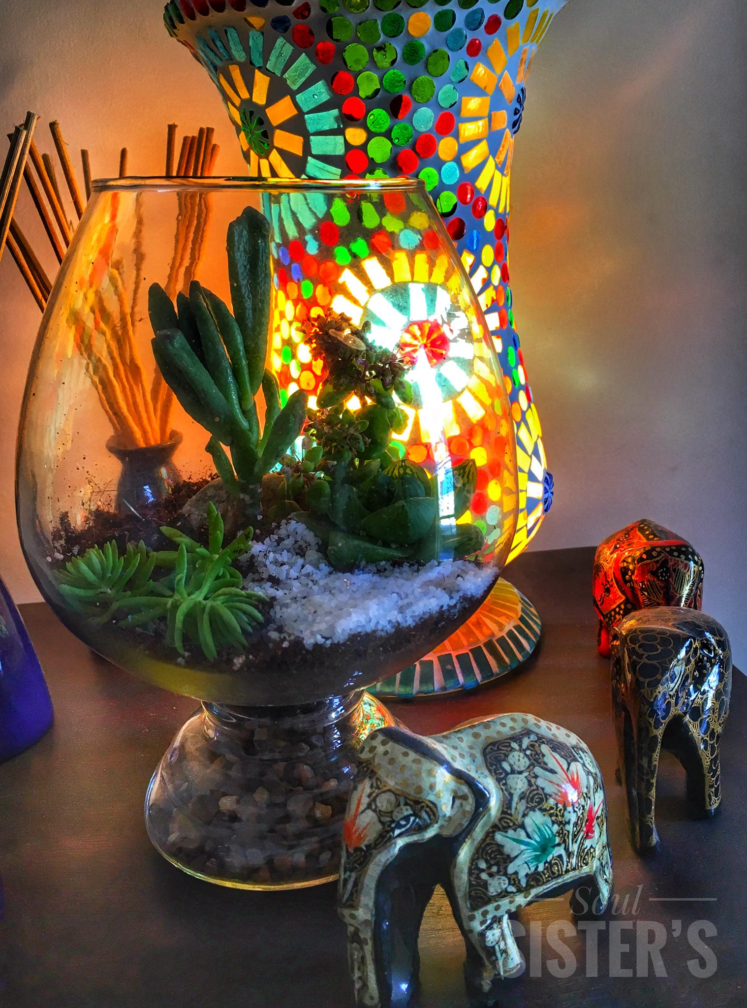 MIni garden in the glass