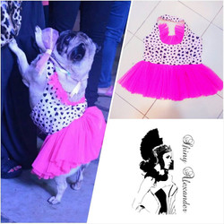 cotton and net customized doggy frocks_