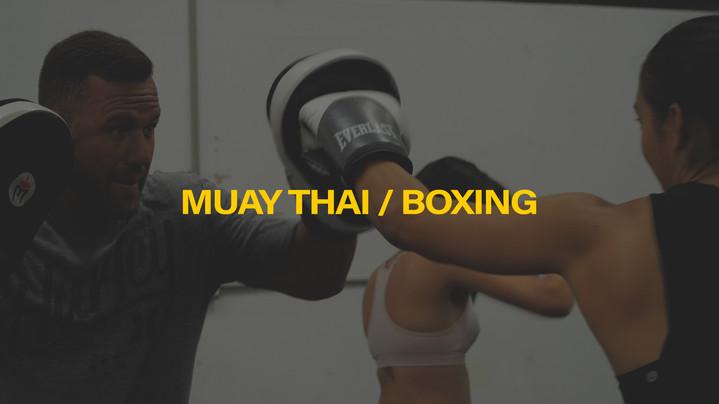 Muay Thai / Boxing