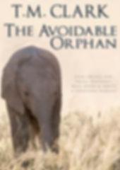 The Avoidable Orphan 2018 small.jpg