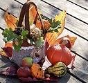 autumn-3691926_640_edited.jpg