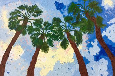 Borrego Palms [Sold]