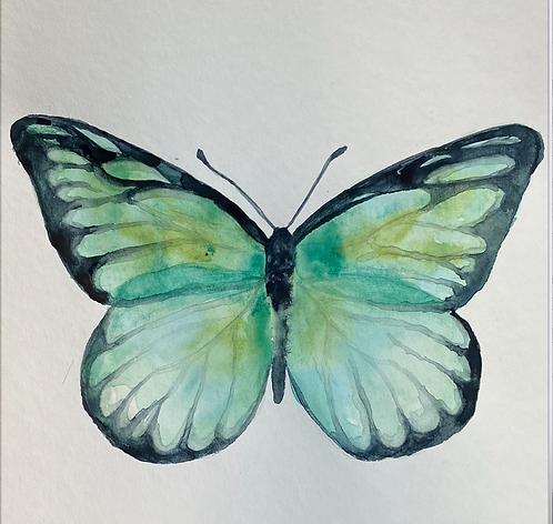 Butterflies Watercolor Painting