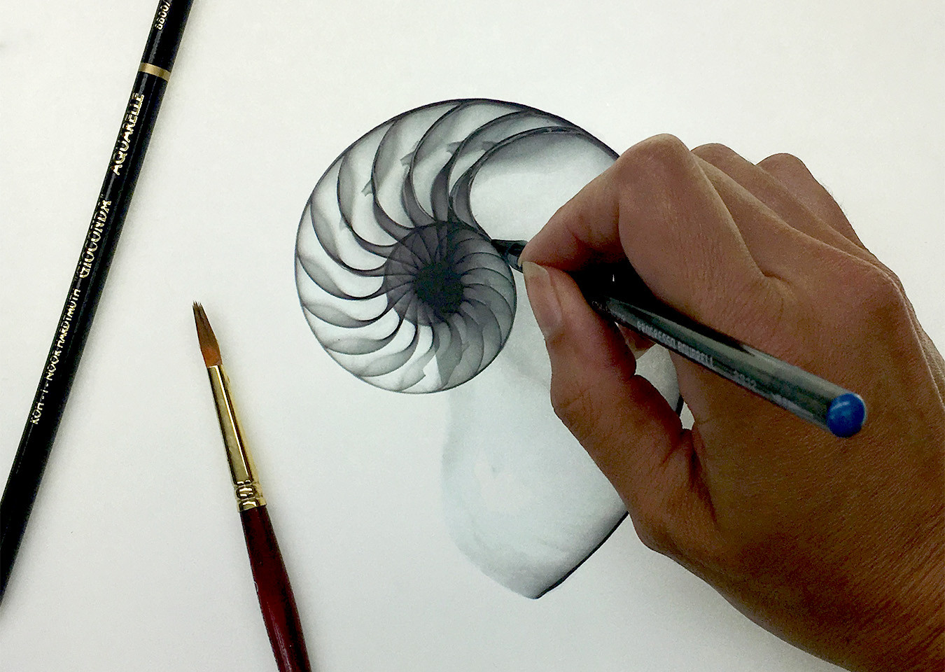 Graphite Aquarell